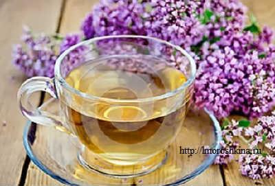 Трава душица лечебные свойства и противопоказания_чай