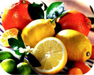 Картинки фруктов цитрусовых