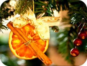 Хвоя сосны- новогоднее фото