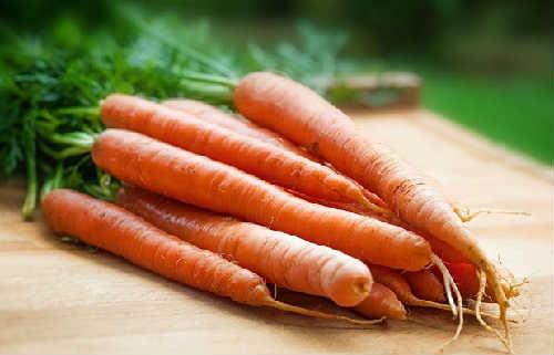 Полезные свойства моркови_для организма человека