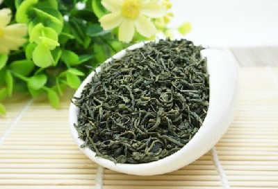 Курильский чай лечебные свойства и противопоказания_как выглядит