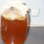 Чем полезен чайный гриб_для организма