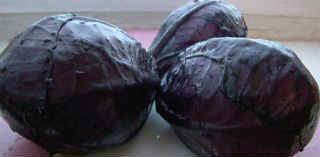 Красные фрукты и овощи_краснокочанная капуста