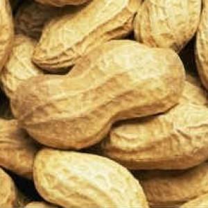 Полезные свойства арахиса