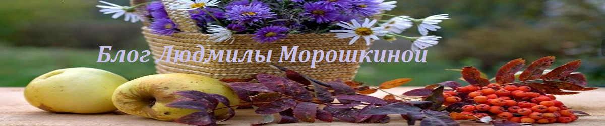 Блог  Людмилы Морошкиной