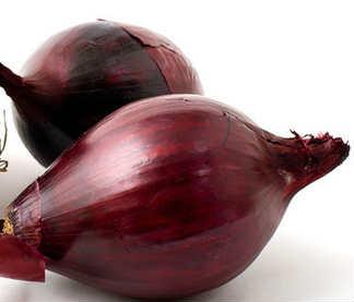 Красный лук полезные свойства