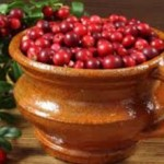 Толокнянка полезные свойства, противопоказания_ягоды
