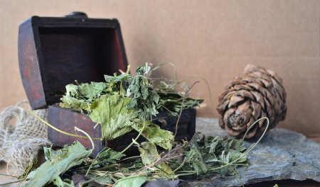 Что подарить на 8 марта_ алтайские травы
