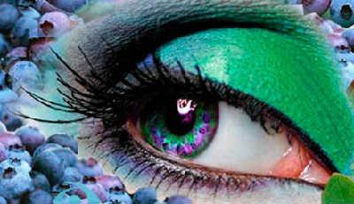Черника польза и вред для здоровья_для зрения