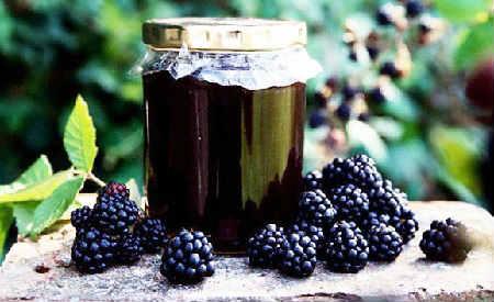 Ежевика полезные свойства и противопоказания_рецепт ежевичного варенья