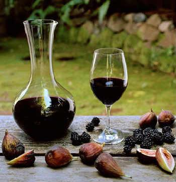 Ежевика полезные свойства и противопоказания_ежевичное вино