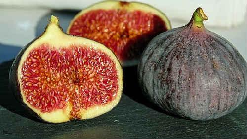 инжир _фото плода