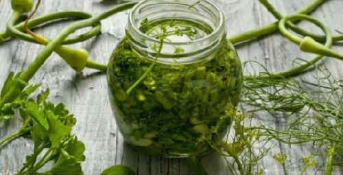 Zagotovka zeleni na zimu neobychnye recepty1