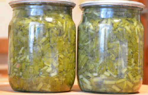Zagotovka zeleni na zimu neobychnye recepty6