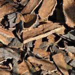 Кора дуба-лечебные свойства и противопоказания_ измельченная кора