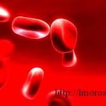 _очищение крови народными средствами в домашних условиях травами