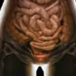 Правильная работа кишечника