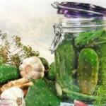 Recepty malosol'nyh ogurcov bystrogo prigotovlenija6