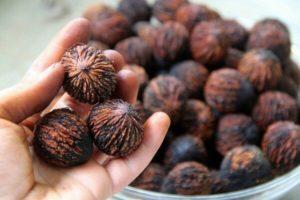 Какими свойствами обладает чёрный орех?