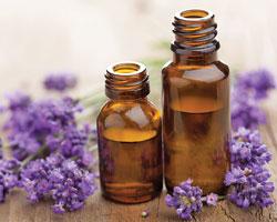 Лаванда: применение эфирного масла в домашних условиях